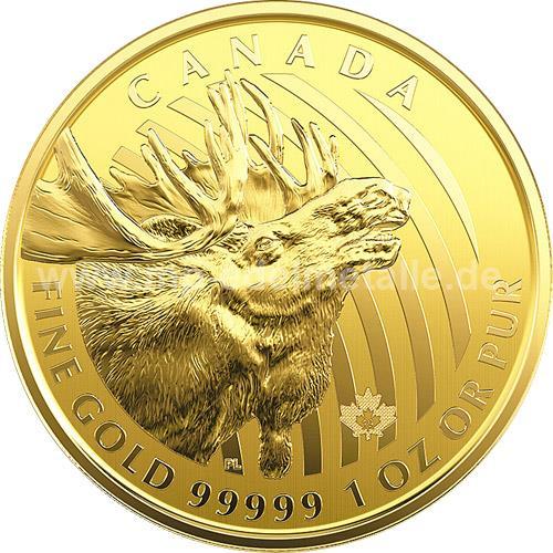 Kanada Elch / Moose 1oz (2019)