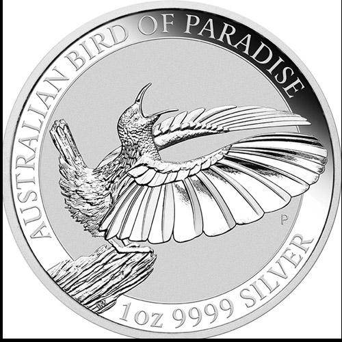 Birds of Paradise Victorias Riflebird (differenzbest.) (2018)
